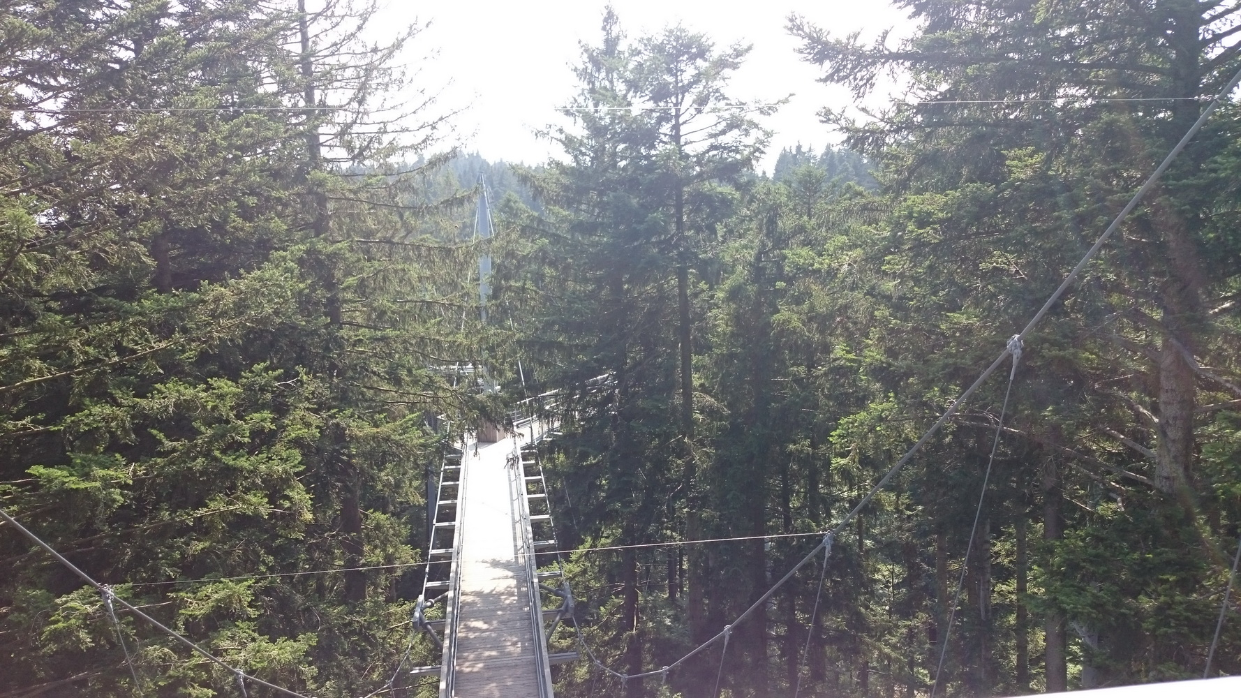 Baumkronenpfad Skywalk in Füssen im Allgäu